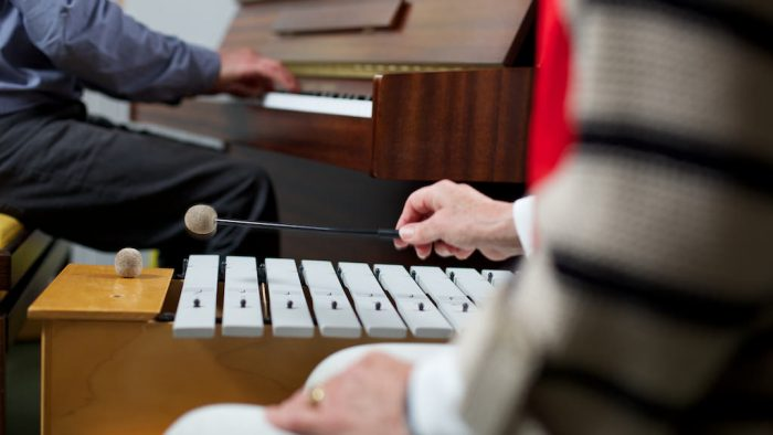 Rowcroft Hospice Music Therapy Xylophone
